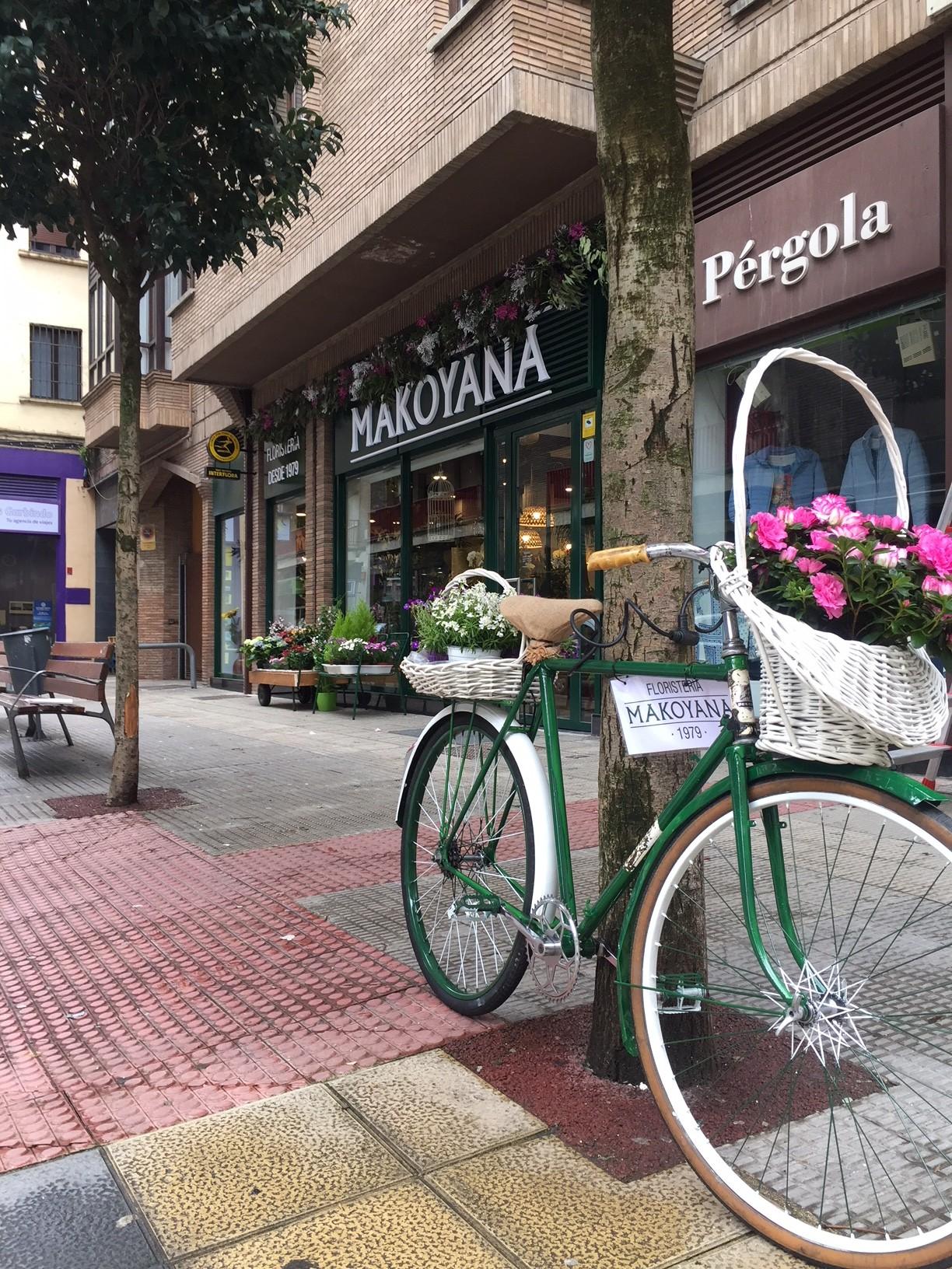 fachada_comercio_local_cartel_letras_escaparate_floristeria_decoracion_exterior_calle_ESTELLA_NAVARRA_IMPRESIÓN_DISEÑO_VINILOS_ROTULACIÓN